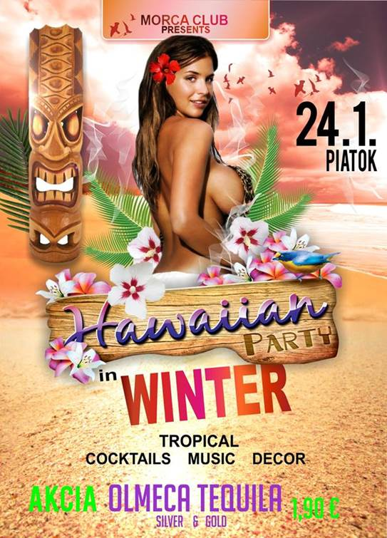 Hawaiian party in winter // 24. januar 2014 // Morca Club